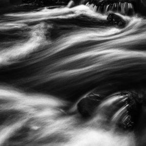 bosbeek / forest creek