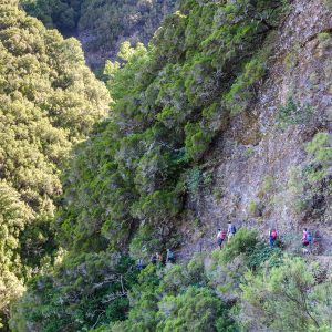 Madeira_hiking_tour-5